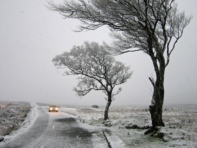 padlý sníh